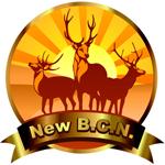 NewBCNTrading
